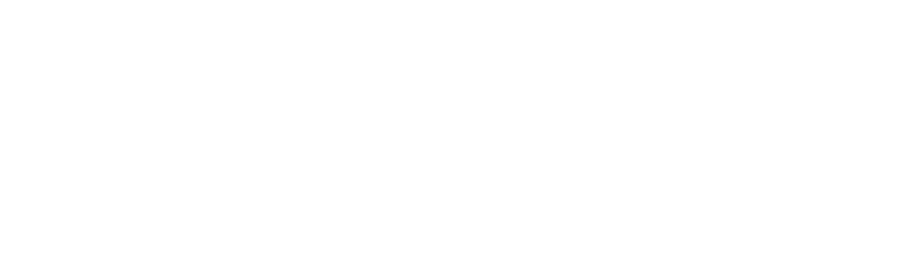 precision-point-diagnostics-logo-white